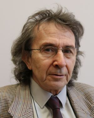 Tomáš Roubíček